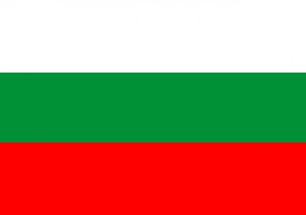 Sprachpaket Bulgarisch Shopware 5.x