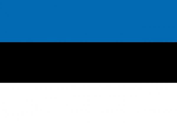 Sprachpaket Estnisch Shopware 5.x